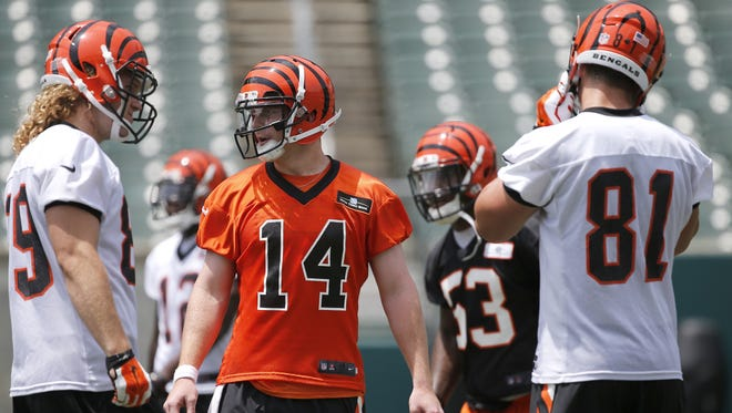 Bengals quarterback Andy Dalton (14), center, commands the huddle during minicamp practice.
