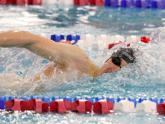 ELM 20150227 StateSwimming