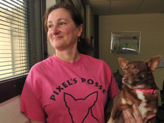 Pixel Posse puppies at Juvenile Detention Center