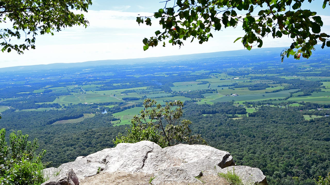 Hike Flat Rock trail at Colonel Denning State Park