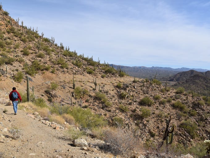 Taking in the views along the Gila River Canyons passage