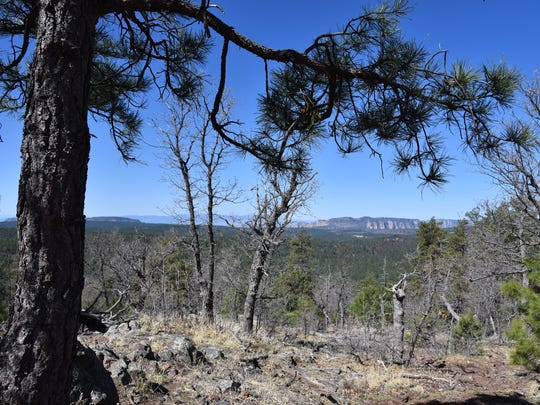 Views of Sedona from Crystal Point Trail in Munds Park.
