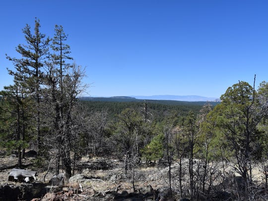 View from the switchbacks of the Crystal Point Trail