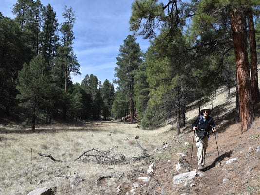 Flagstaff hike: Fay Canyon