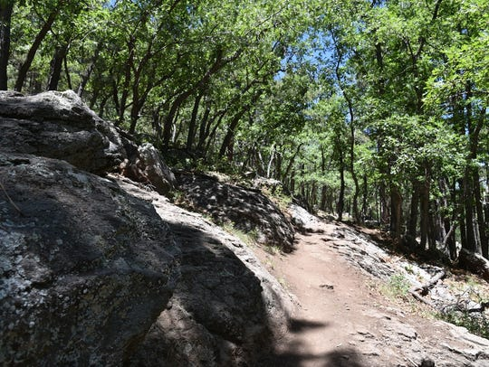 Switchbacks on the Rogers Trail ease the 600-foot elevation