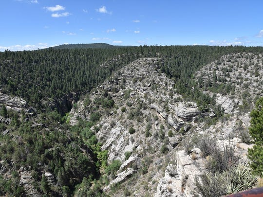 The view of Walnut Canyon from the Rim Trail.