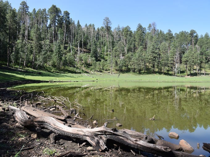 Potato Lake is a tiny pool on the Mogollon Rim north