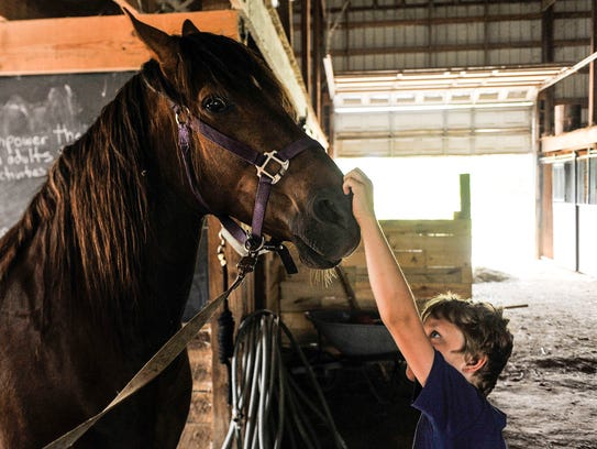 Ryder McDaniel pets the nose of Sunny, one of the horses