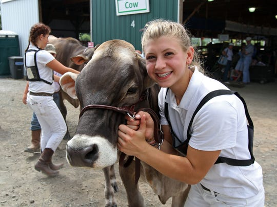 Sadie Strober of Stockton, holds her Brown Swiss cow just before the two enter the ring for competition at the 2014 Hunterdon County 4-H and Agricultural Fair. This year's Fair runs from Aug. 21 to 25 at South County Park in Ringoes.