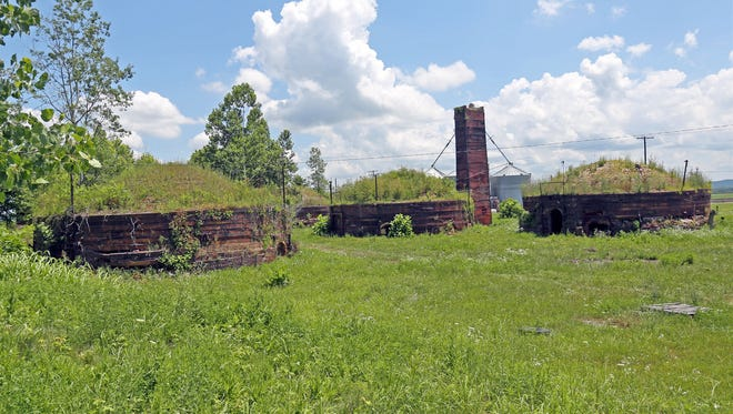 Weeds and deterioration have taken over the Medora beehive brick kilns that have sat dormant since the factory closed in 1992.