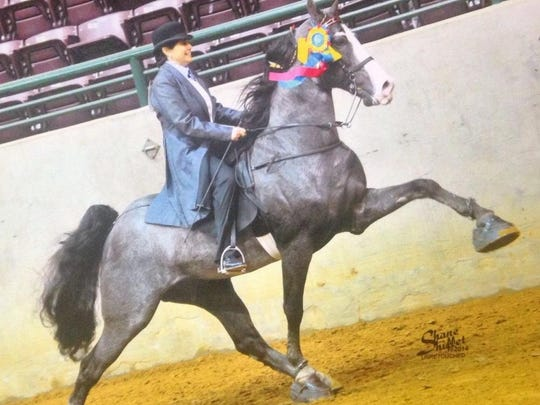 Carole Baxter is shown riding in amateur competition aboard Jose's Star Attraction.