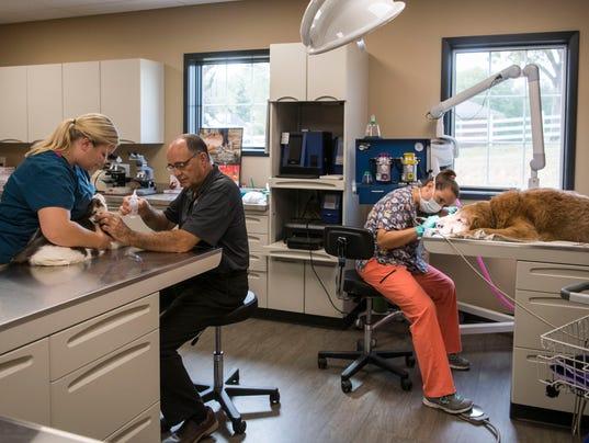 EBJ New Animal/Equine Clinic 01