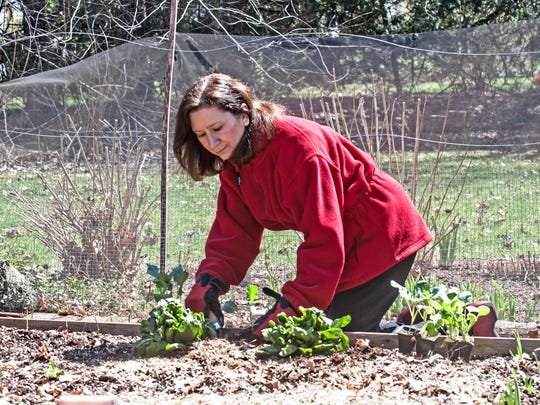 Gardening books author Marie Iannotti of Lake Katrine said fall maintenance of plant beds doesn't have to be especially tidy since leaf decomposition conditions the soil for spring growth.