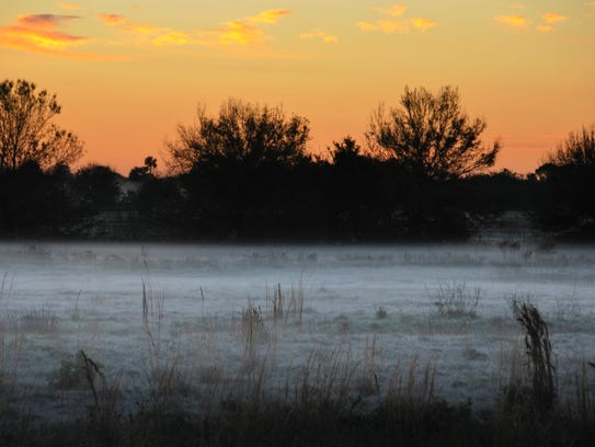 Ground fog, mist and frost in a field along Wickham