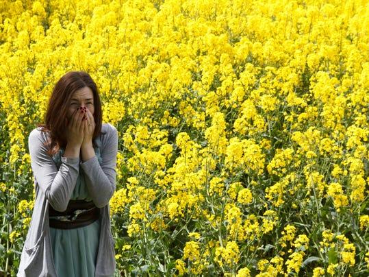 Allergic Hayfever Sneeze