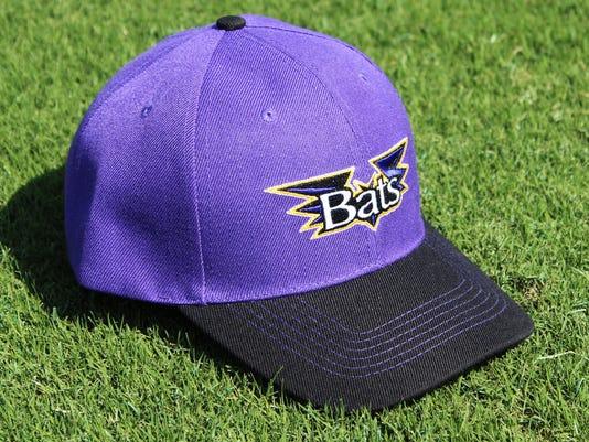635768904888264411-Purple-Bats-Hat-Giveaway