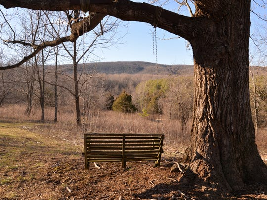 A tree swing Ken Brasfield made so he and his wife, Diana, could sit and look out to the mountains at their Middlebrook tree farm.