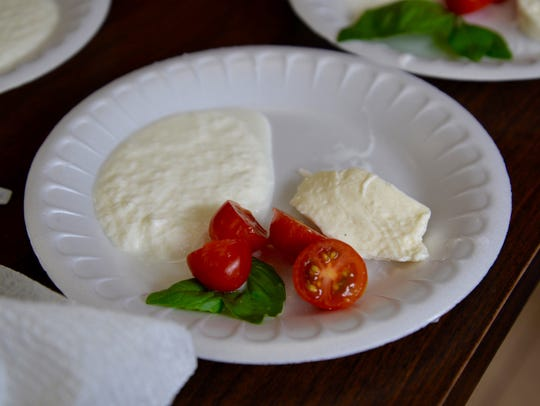 Freshly made mozzarella and ricotta cheese with fresh