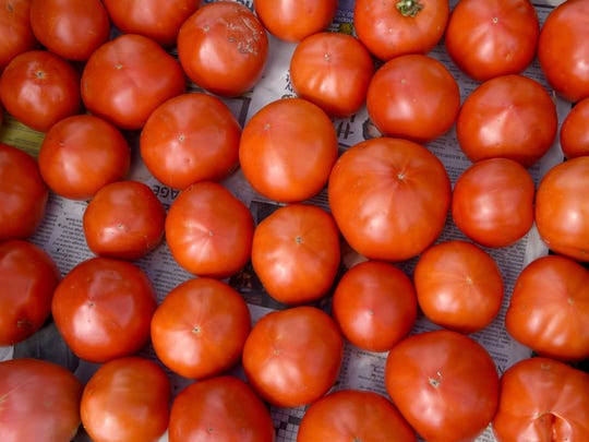 Tomatoes prepared for the Canal Market and Community Supported Agriculture boxes at Bird's Haven Farms in Granville.