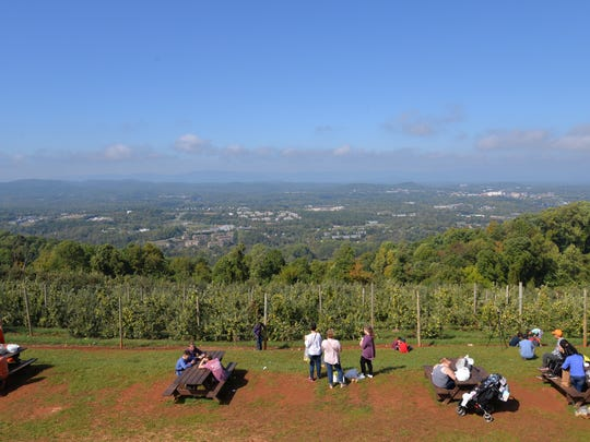 Views at Carter Mountain Orchard in Charlottesville.