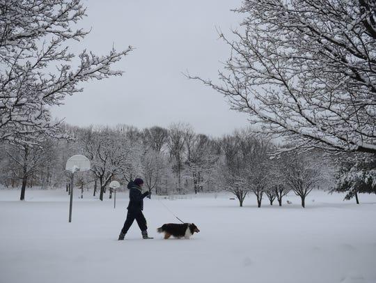 Iwona Lewinski of Wallington walks Nellie, her 12-year-old