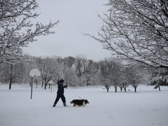 Iwona Lewinski of Wallington walks Nellie, her 12-year-old