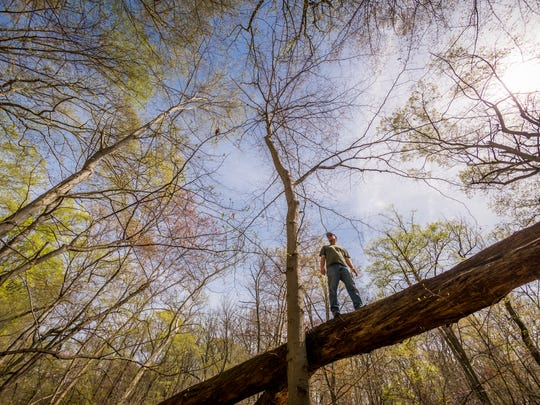 A group of Wilmington residents take regular hikes,