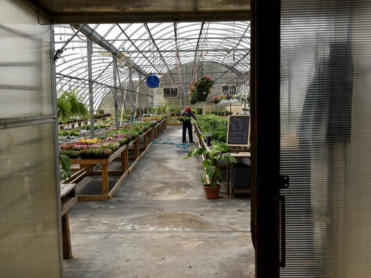 Steven Underwood shops for seedlings and plant starters at Sprout Garden Center in Coshocton.