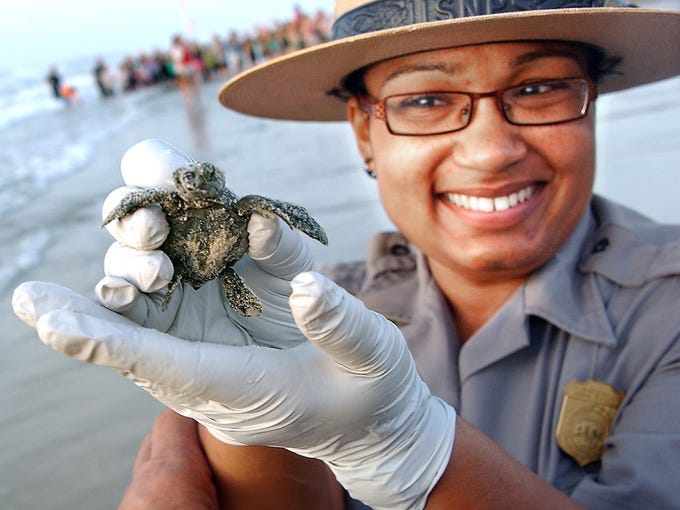 A Padre Island National Seashore ranger holds a baby