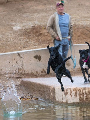 Arizona Veterinarian's Office is encouraging dog owners to keep an eye out for common signs of Leptospirosis.