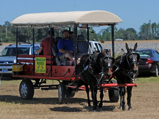 Visitors take a wagon ride during a previous Jay Peanut Festival.