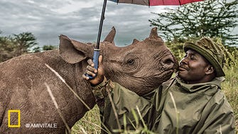 """A photo in the """"@NatGeo: The Most Popular Instagram Photos"""" exhibit at the National Geographic Museum in Washington, D.C.: Kenyan rangers hand-raising three baby rhinos at Lewa Wildlife Conservancy."""