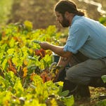 Chad Bishop of Greenbriar Farms in Easley will be among presenters at the South Carolina Organic Growing Conference.
