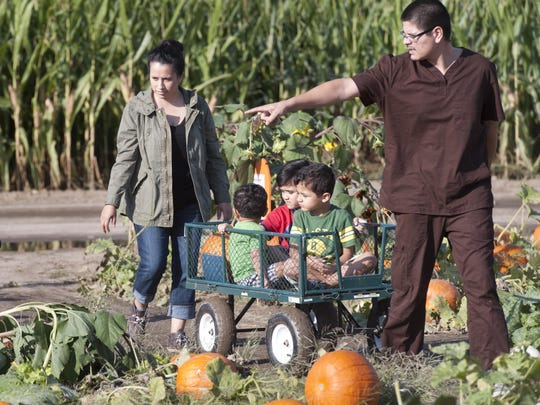 Joseph Valdez points out a possible pumpkin as the family looks for pumpkins at Vossler Farms Pumpkin Patch. From left is Ana Maria, John, 1, Julian, 5, Joseph, 6, on Monday, October 19, 2015.