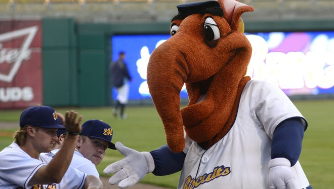 Montgomery Biscuits mascot Big Mo greets the players before the Jacksonville  Suns game at Riverwalk Stadium in Montgomery, Ala. on  Monday May 5, 2014.