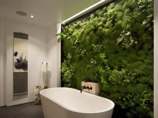Homes Indoor Plant Design