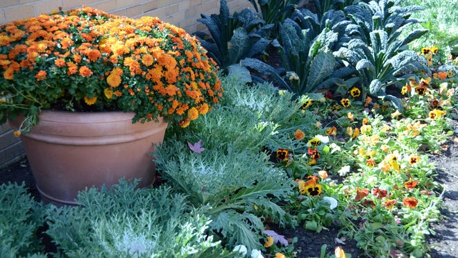 The annual fall display is a feast for eyes in The Orchard Shop courtyard.
