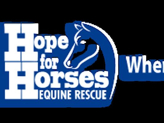 635997879214048422-Hope-for-Horses-Logo-White.png