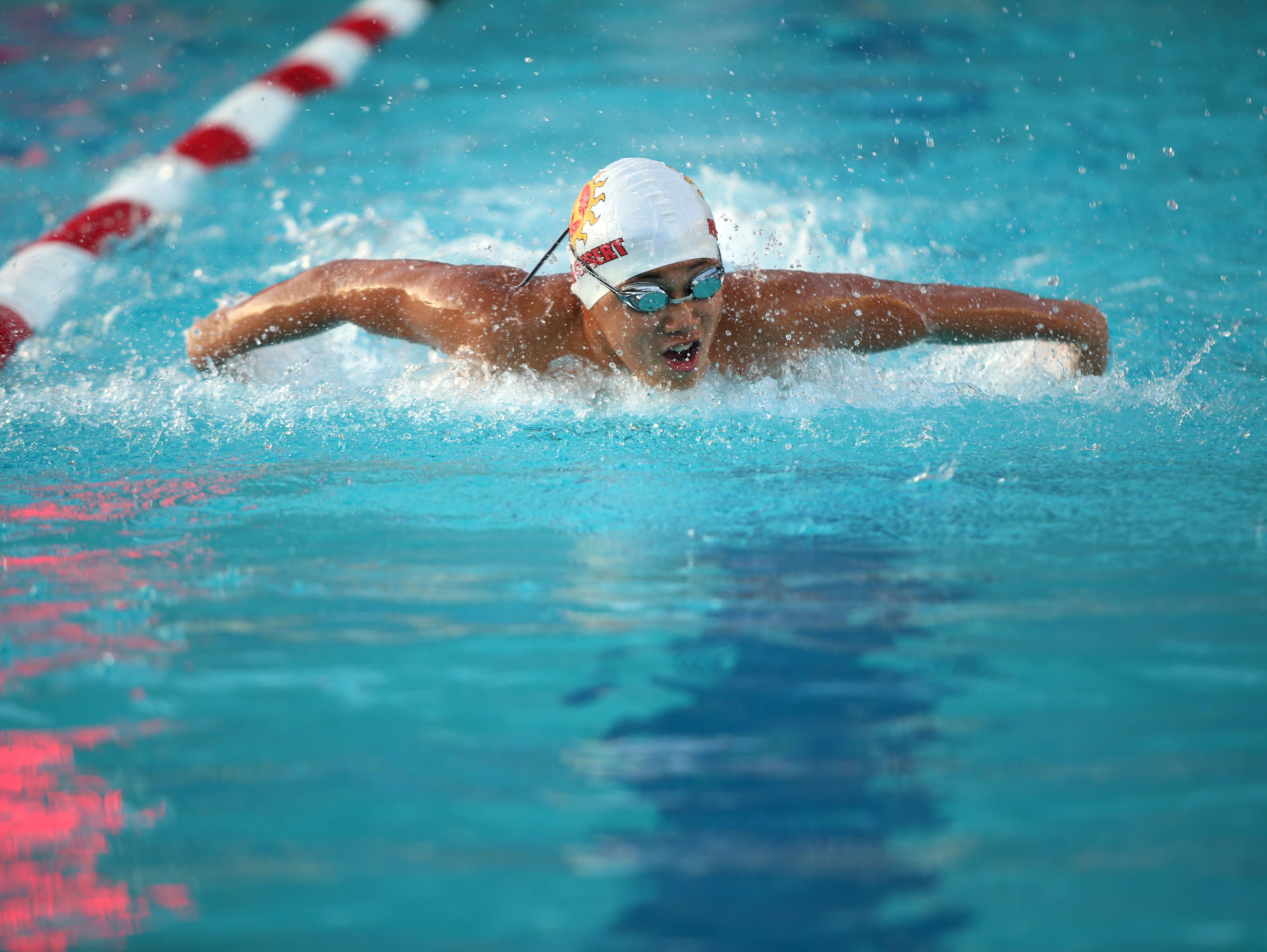 Young Talent Shines In Dvl Individual Swimming Finals