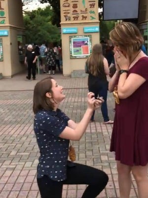Becky McCabe proposes to Jessa Gillaspie at the Memphis Zoo on May 25,  2018. The couple, who met at the University of Memphis, unknowingly planned to pop the question to each other on the same day. Their mutual friend caught it on video.