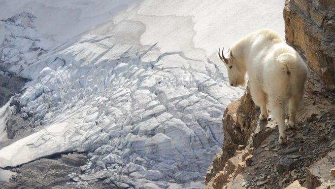 """Photographer Sumio Harada calls this photo near Sexton Glacier a """"dream come true."""""""