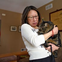 Susie Osaki Holm holds her cat Bello Wednesday in her home. Bello went missing about two years ago and was just recently returned after being identified by a chip implanted in his neck.