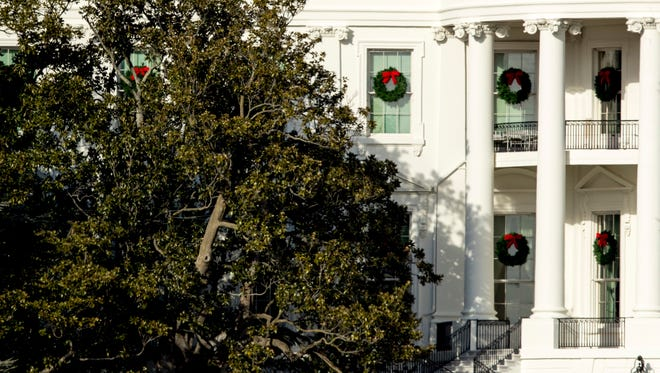A large portion of a famed magnolia tree, at left, photographed from the Ellipse in Washington on Tuesday, Dec. 26, 2017, and planted on the south grounds of the White House by President Andrew Jackson, has become too weak to remain standing.