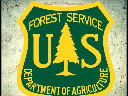 636543118406238926-forest.jpg