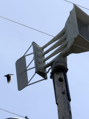 A red-headed woodpecker flies near a warning siren in Lakeview in this file photograph. The Answer Dude strikes again answering the question: Why do the sirens sound at noon everyday?