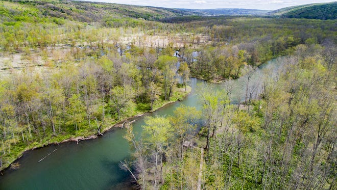 The Finger Lakes Land Trust, working with the DEC and the villages of Montour Falls and Watkins Glen, recently purchased 33 acres to add to a proposed conservation area in Owasco Flats.