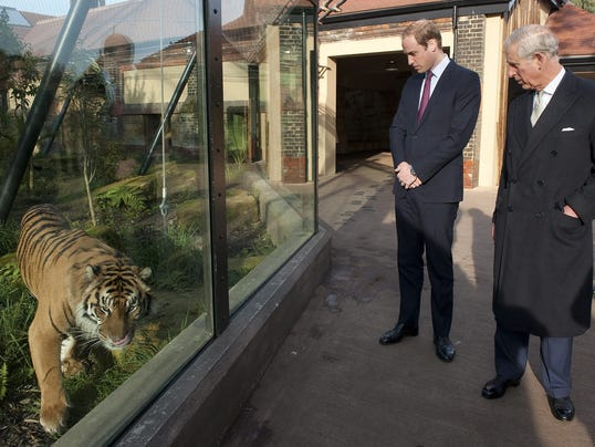 Prince William, Prince Charles and tiger