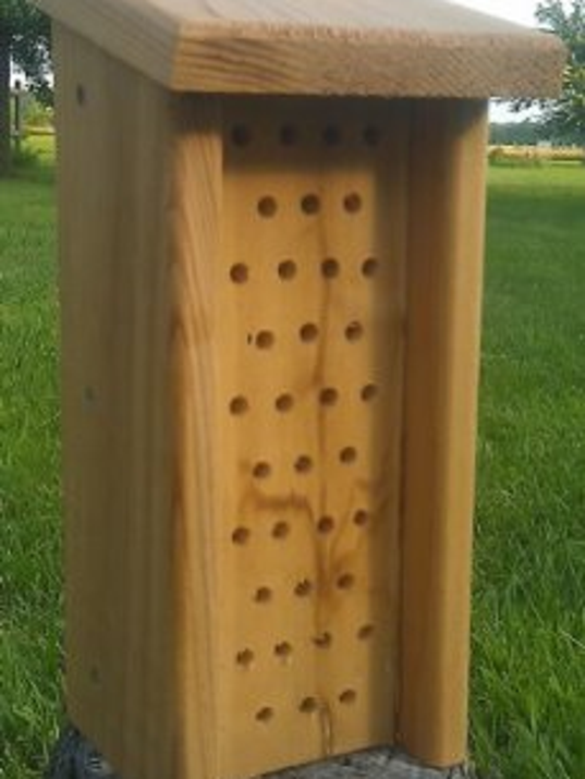 Orchard Mason Bee houses provide a safe place for these pollinators to lay their eggs.