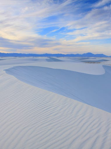 White Sands National Monument preserves 224 square miles of the world's largest gypsum dunefield. At least 45 species are found here and nowhere else on Earth.