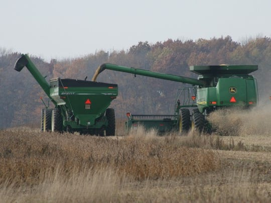 A combine takes soybeans off a Michigan farm field.